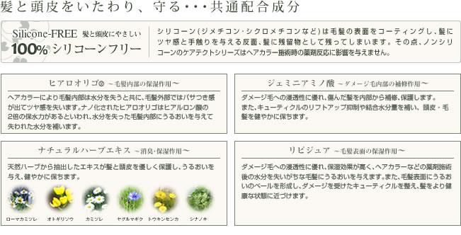ナプラ ケアテクトHB 02