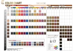 画像2: コレストン パーフェクト+(第1剤)【ブライトブラウン】/全25色から選ぶ 80g/ウエラ